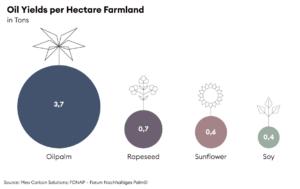 Camparison of Oil Yields per Hectare Farmland