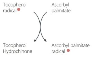 Figure 1: Regeneration of Tocopherol by Ascorbylpalmitate
